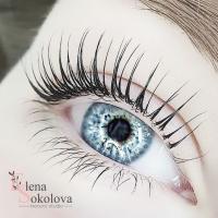 """Компания """"Beauty studio Elena Sokolova"""""""