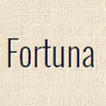 "Компания ""Фортуна"""