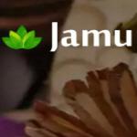 """Компания """"Jamu-SPA"""""""