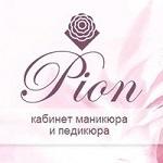 """Компания """"Pion"""""""