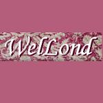 "Компания ""WelLond"""